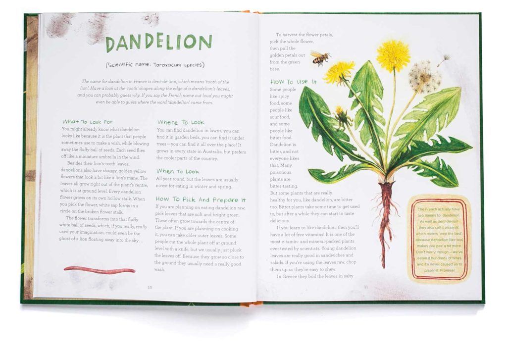 pages from Let's Eat Weeds featuring dandelion