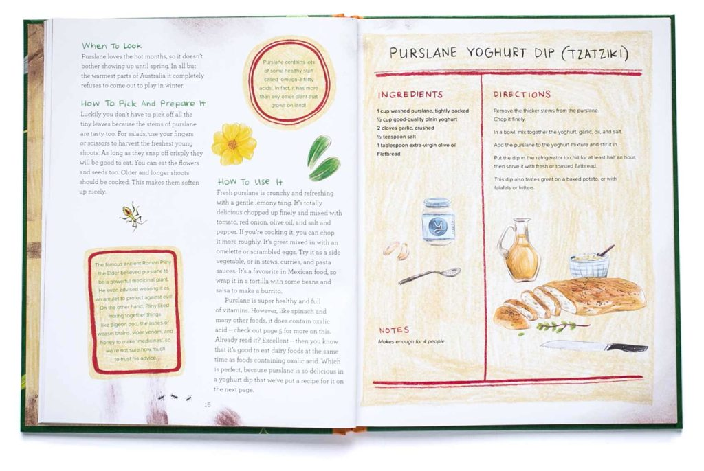 pages from Let's Eat Weeds including a purslade tzatziki recipe